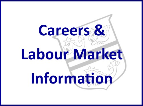 Careers and LMI